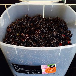01.09.15 - blackberrying